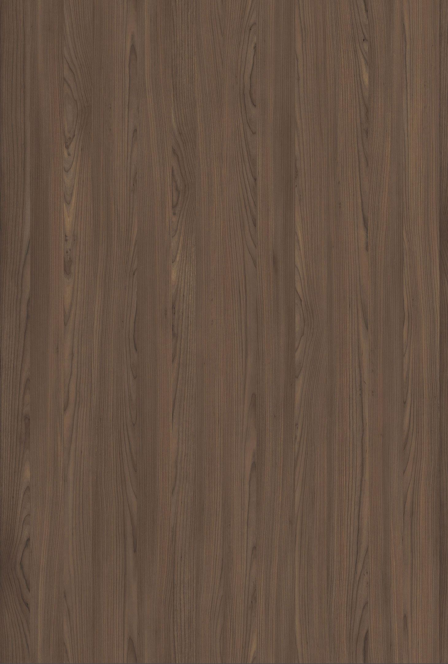 סאקורה ערמוני ML51NT19
